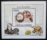Poštovní známka Komory 2010 Fosílie DELUXE Mi# 2644 Block