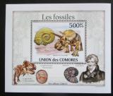 Poštovní známka Komory 2010 Fosílie DELUXE Mi# 2645 Block