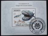 Poštovní známka Komory 2009 Mořská fauna Mi# Block 579 Kat 15€