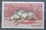 Poštovní známka Francouzské Somálsko 1958 Prase savanové Mi# 314
