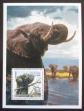 Poštovní známka Guinea 2002 Sloni Mi# N/N