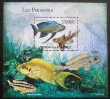 Poštovní známka Komory 2011 Ryby Mi# Block 623 Kat 13€