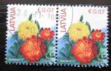 Poštovní známky Lotyšsko 2019 Aksamitník pár Mi# 901 VI