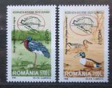 Poštovní známka Rumunsko 1999 Evropa CEPT, ptáci Mi# 5414-15