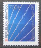 Poštovní známka Chorvatsko 1993 Plavání Mi# 246