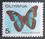 Poštovní známka Guyana 1978 Prepona pheridamas Mi# 542