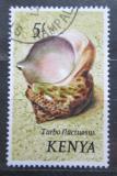 Poštovní známka Keňa 1971 Turbo fluctuosus Mi# 48