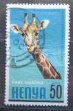 Poštovní známka Keňa 1981 Žirafa síťovaná Mi# 197
