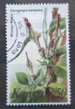 Poštovní známka Keňa 1983 Ceropegia ballyana Mi# 250