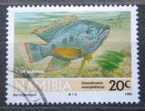 Poštovní známka Namíbie 1992 Tlamoun mosambický Mi# 719