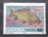 Poštovní známka Namíbie 1992 Kapr obecný Mi# 721