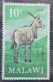Poštovní známka Malawi 1971 Oryx Mi# 153