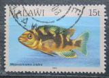 Poštovní známka Malawi 1984 Melanochromis crabro Mi# 415 I