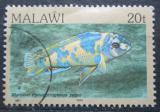 Poštovní známka Malawi 1984 Tlamovec příčnopruhý Mi# 416 I