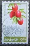 Poštovní známka Malawi 1993 Ximenia caffra Mi# 615