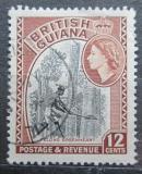 Poštovní známka Britská Guiana 1954 Dřevorubec Mi# 206