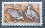 Poštovní známka Nová Kaledonie 1948 Kagu chocholatý Mi# 328