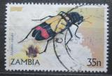 Poštovní známka Zambie 1986 Mylabris tricolor Mi# 349