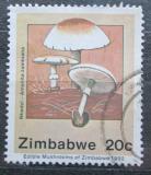 Poštovní známka Zimbabwe 1992 Amanita zambiana, houby Mi# 476
