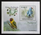 Poštovní známka Mosambik 2010 Papoušci DELUXE Mi# 3509 Block