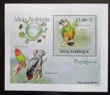Poštovní známka Mosambik 2010 Papoušci DELUXE Mi# 3512 Block
