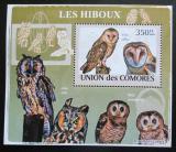 Poštovní známka Komory 2009 Sovy DELUXE Mi# 2193 Block