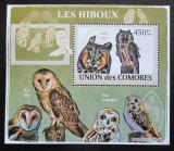 Poštovní známka Komory 2009 Sovy DELUXE Mi# 2194 Block