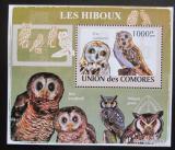 Poštovní známka Komory 2009 Sovy DELUXE Mi# 2196 Block