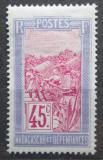 Poštovní známka Madagaskar 1928 Přeprava na nosítkách Mi# 159