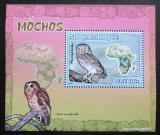 Poštovní známka Mosambik 2007 Sovy DELUXE Mi# 3020 Block
