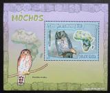 Poštovní známka Mosambik 2007 Sovy DELUXE Mi# 3022 Block