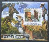 Poštovní známky Mosambik 2011 Evoluce člověka Mi# Block 433 Kat 10€