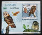 Poštovní známka Komory 2009 Sovy DELUXE Mi# 2414 Block