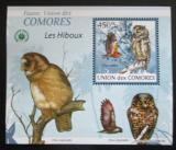 Poštovní známka Komory 2009 Sovy DELUXE Mi# 2416 Block