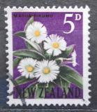 Poštovní známka Nový Zéland 1962 Celmisia coriacea Mi# 398