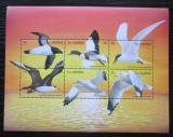 Poštovní známky Gambie 1999 Mořští ptáci Mi# 3358-63 Kat 12€