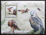 Poštovní známka Komory 2009 Orli Mi# 2423 Kat 15€