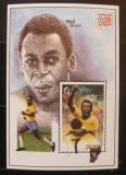 Poštovní známka Gambie 1994 MS ve fotbale Mi# Block 237