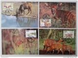Maxikarty Ghana 1984 Bongo lesní, WWF 015 Mi# 1060-63