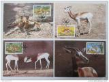 Maxikarty Senegal 1986 Gazely, WWF 036 Mi# 875-78
