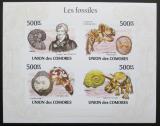 Poštovní známky Komory 2009 Fosílie, pravěk Mi# 2642-45 B