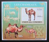 Poštovní známka Komory 2009 Velbloud neperf Deluxe Mi# 2128 B