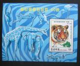 Poštovní známka KLDR 1999 Tygr Mi# Block 420