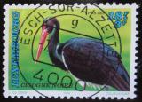 Poštovní známka Lucembursko 1992 Čáp černý Mi# 1308