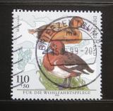 Poštovní známka Německo 1998 Polák malý Mi# 2017