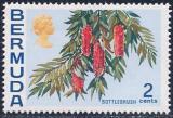 Poštovní známka Bermudy 1970 Štětkovec Mi# 245