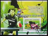 Poštovní známka Komory 2009 Stolní tenis Mi# Block 494 Kat 15€