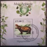 Poštovní známka Mosambik 2010 Hroch Mi# Block 309