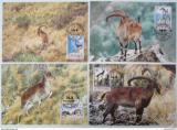 Maxikarty Etiopie 1990 Horské kozy, WWF 100 Mi# 1385-88