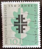 Poštovní známka Německo 1958 Festival hrnčířů Mi# 292